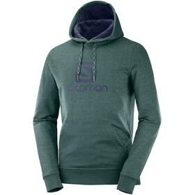 Salomon Logo Hoodie Men green gab